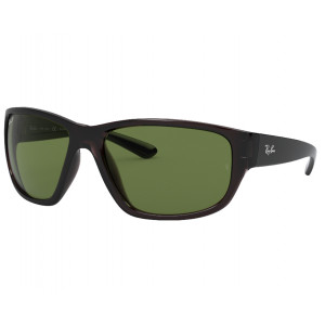 Ray-Ban RB4300 Transparent Grey Green Classic G-15 Polarized