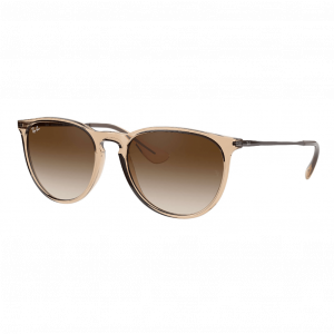 Ray-Ban Erika Marron Transparent Brun Dégradé