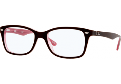 Ray-Ban RX5228 Brown/Opaline Pink
