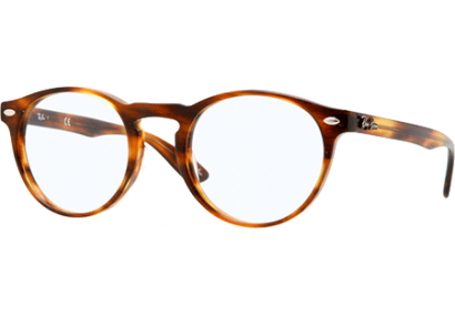 ray ban homme leopard