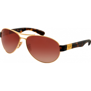 Ray-Ban RB3509 Arista Brun Dégradé