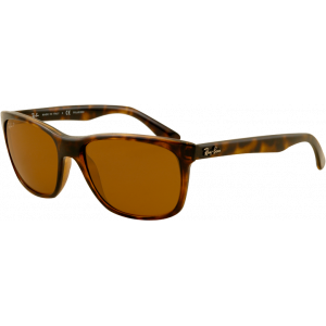 Ray-Ban RB4181 Light Tortoise Brown Polarized