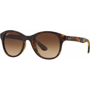Ray-Ban RB4203 Ecaille Brillant Brun Dégradé