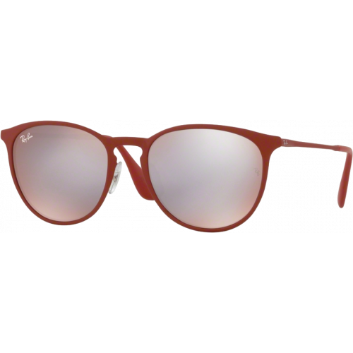 c6ec9c4c1b Ray-Ban Erika Metal Rubber Bordo  Bordeaux Flash Gris - EyeShop