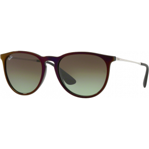 Ray-Ban Erika Black/Red Green Gradient